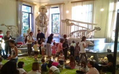 1° Domenica del Mese – MuseodiZoologia