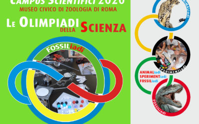 Campus Scientifici: LE OLIMPIADI DELLA SCIENZA